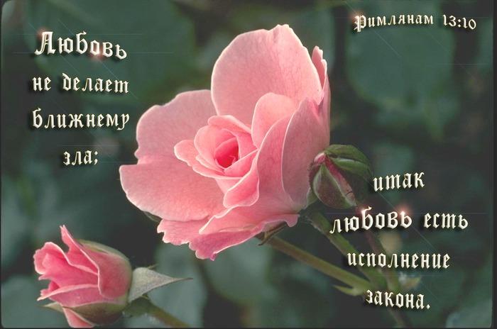 Natasha Sarshaeva фото - Православные знакомства - Православная Социальная Сеть